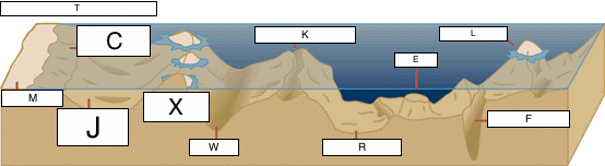 which of the labeled elements shows an oceanic abyss?