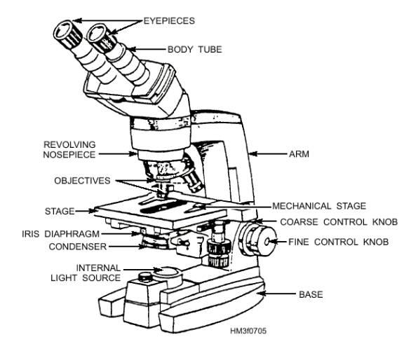 The microscope lesson 0362 tqa explorer what part of a microscope controls the focus ccuart Images