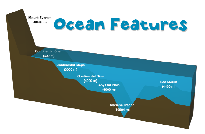 the ocean floor (lesson 0019) - TQA explorer