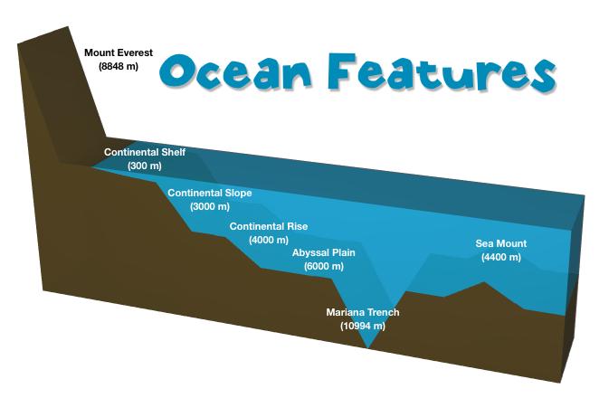 Ocean Parts Diagram Enthusiast Wiring Diagrams