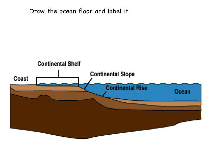 The ocean floor lesson 0019 tqa explorer for Ocean floor description