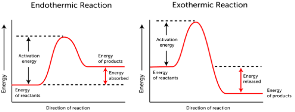 Energy Diagram Endothermic And Exothermic Reactions With Auto