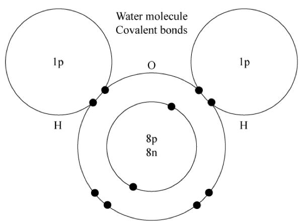 covalent bonding  lesson 0849