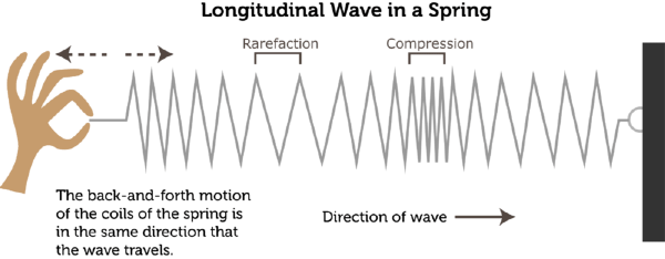 Image result for a longitudinal wave on a spring