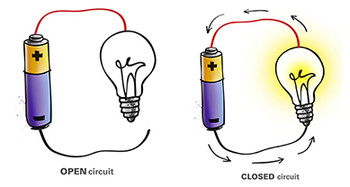 The Light Bulb   U003e C. The Battery D. The Red Wire