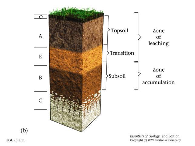 Soils lesson 0088 tqa explorer for What are the different layers of soil