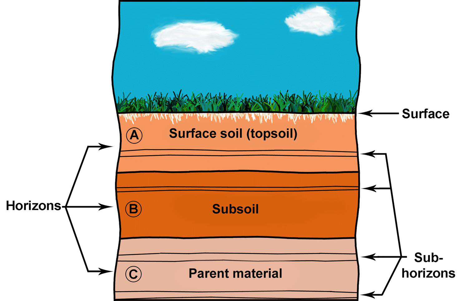 Soils lesson 0088 tqa explorer for What are the four layers of soil