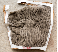 Image of an old, dirty air filter - Filterbuy