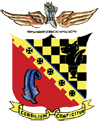 325th Fighter Group