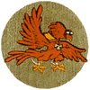65th Fighter Squadron  - Fighting Gamecocks