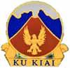 Hawaiian Air Force