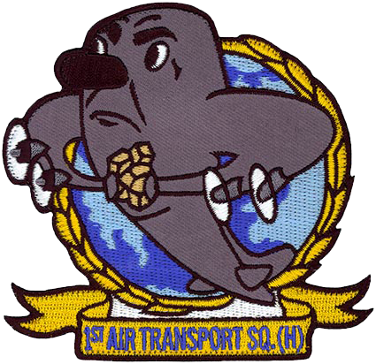 1st Air Transport Squadron