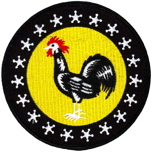 19th Pursuit Squadron