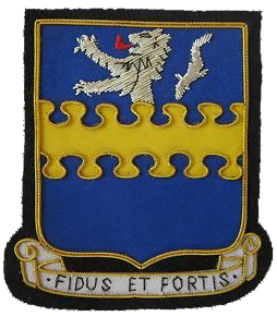 335th Bombardment Group
