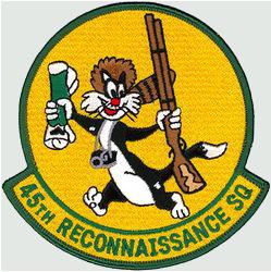 45th Reconnaissance Squadron  - Sylvester