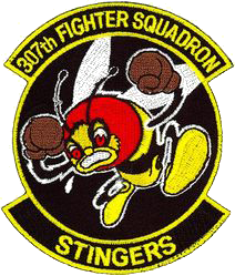 307th Fighter Squadron  - Stingers