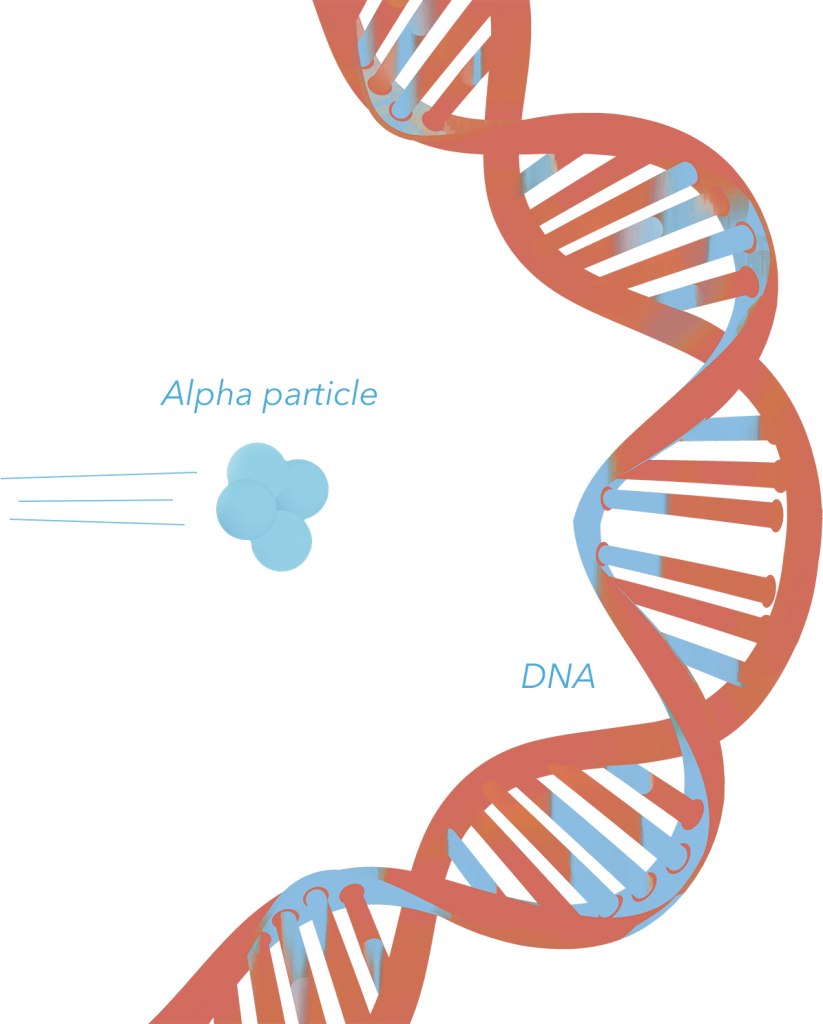 DNA alpha particle collision