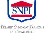 logo_SNPI_rvb_hd