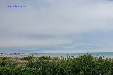 VENTE-3374-AGENCE-DES-PINS-bretignolles-sur-mer