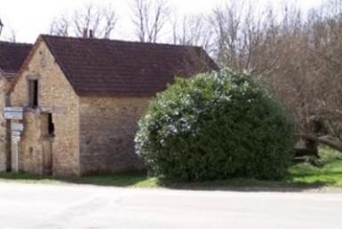 1950-1246-AGENCE-IMMOBILIxE8RE-LES-BASTIERS-VENTE-Maison