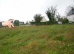 1506-CENTRE-BRETAGNE-IMMOBILIER-VENTE-Terrain-carhaix-plouguer-2