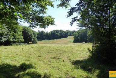 258-456-DELAGE-IMMOBILIER-VENTE-Terrain-boisseuil