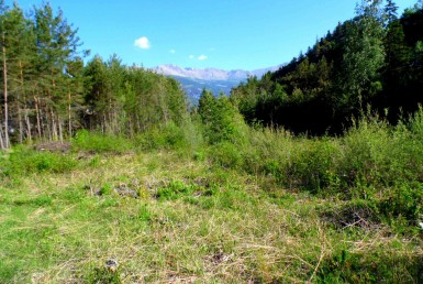 VENTE-192-1460-GROUPE-IMMOGLISS-uvernet-fours