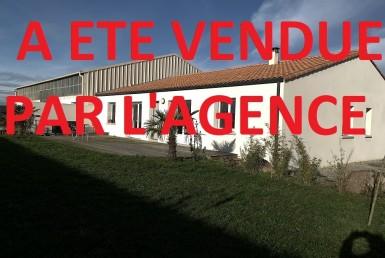 VENTE-2504-IMMOBILIEREMENT-VOTRE-remouille