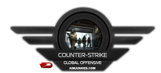 Counter-Strike: Global Offensive - 3 Aylık
