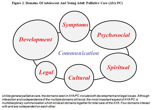 The Challenge of Palliative Care for Adolescents and Young