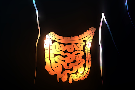 Study Suggests Parkinson Could Be Linked to Gut Infection Years Before Onset