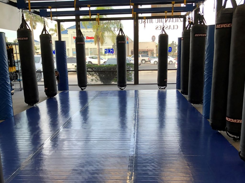 boxing martial arts  mats