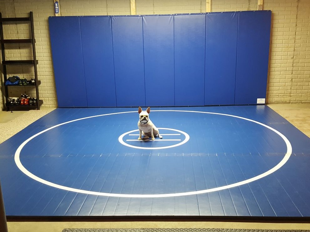 blue home wrestling mat
