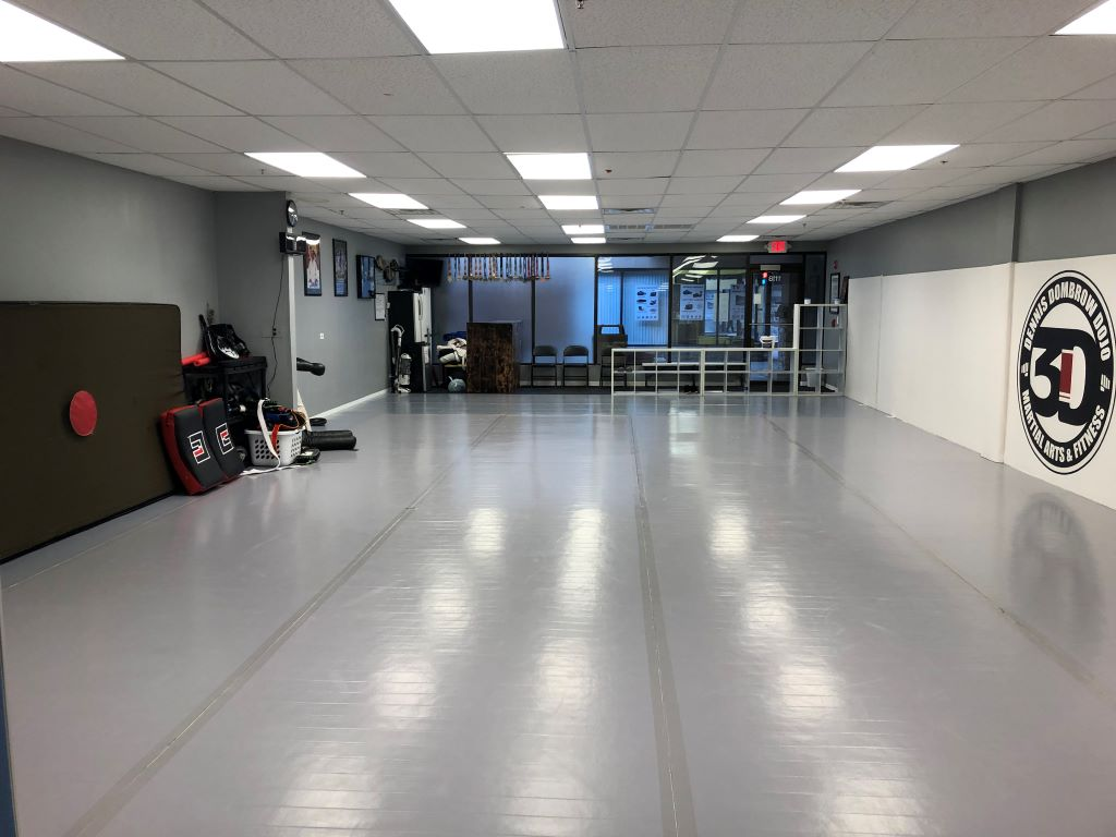 3D MMA grappling room