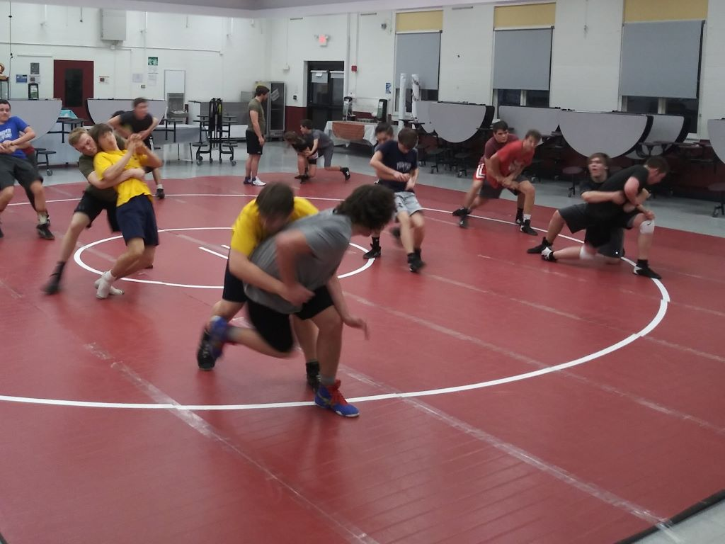 maroon color wrestling mat for sale