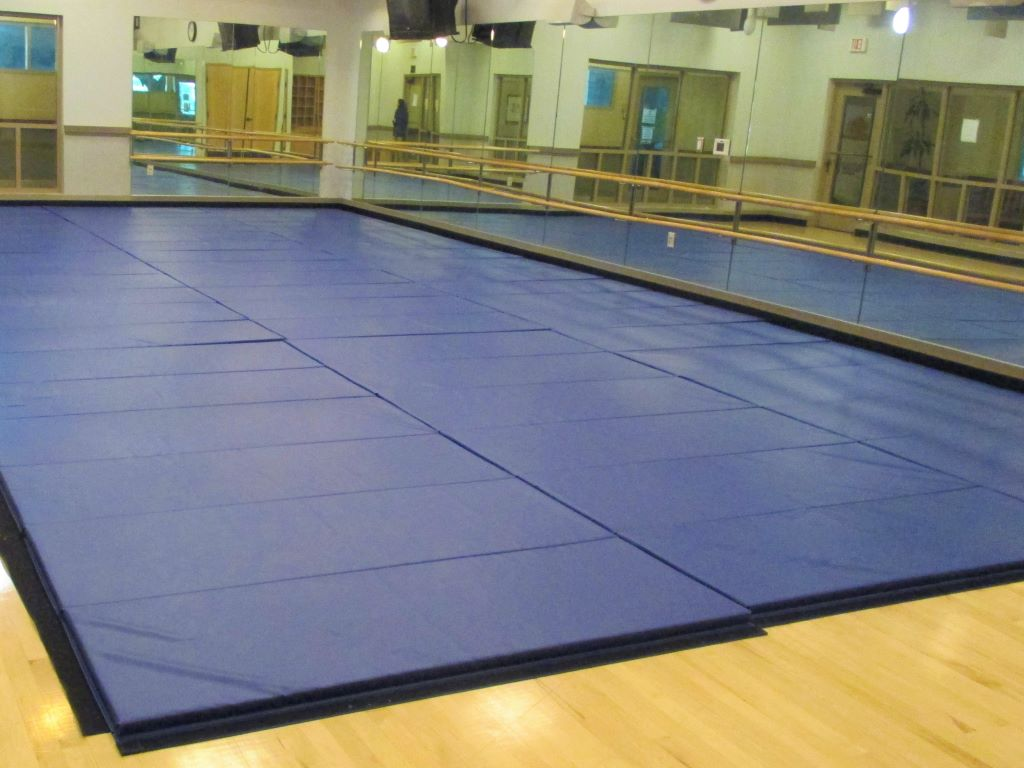 Muay Thai martial arts training mats