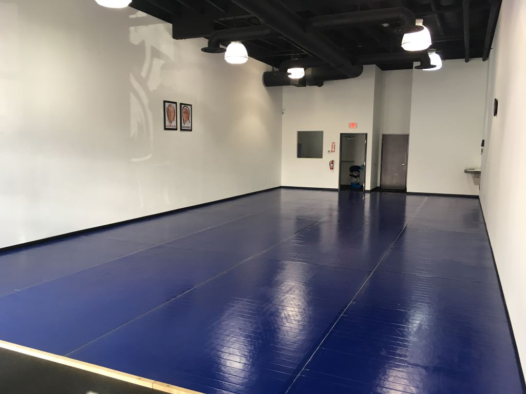 AK Athletics blue martial arts mats in Milestone Martial Arts Academy