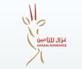 Ghazal insurance