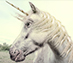 Chasing the Unicorn that is the Influencer