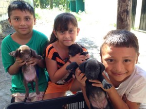 These dedicated kids helped rescue a litter of puppies living on the streets.