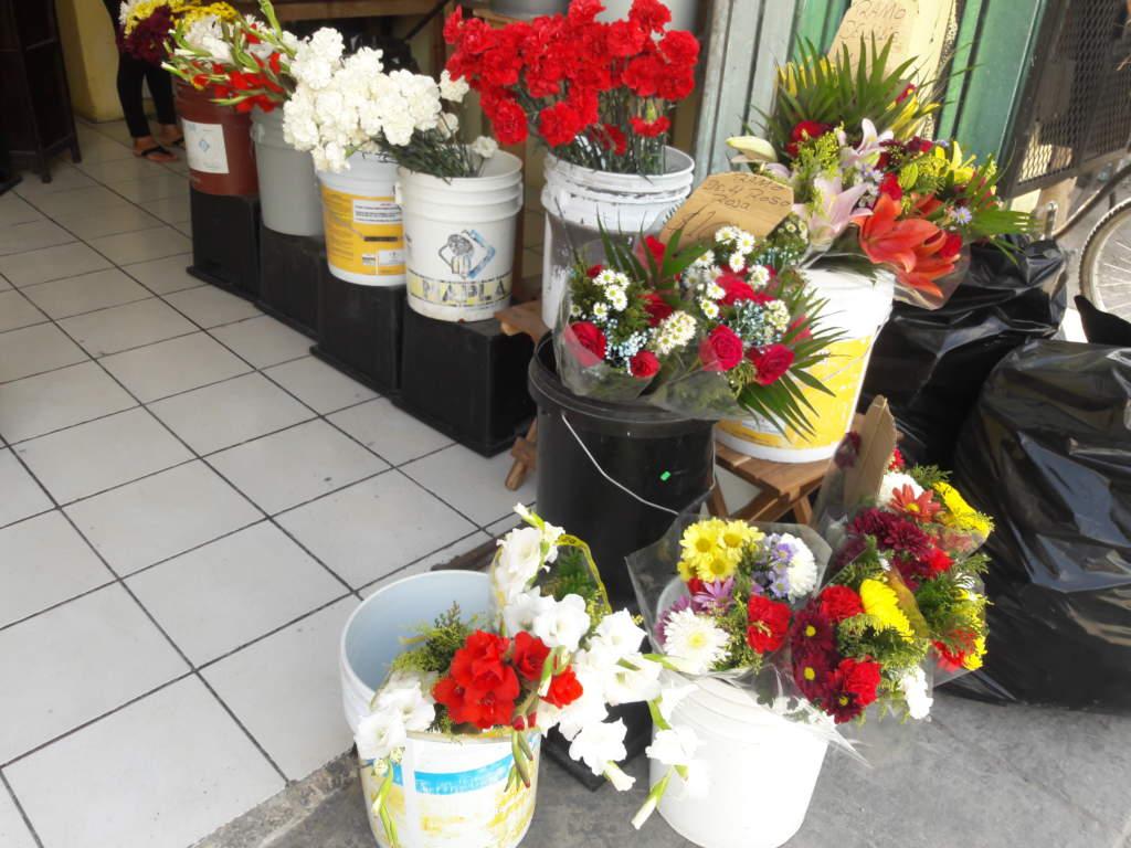 flores-front