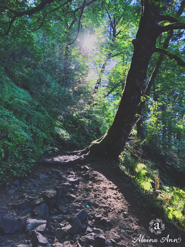 Falling in love with Oregon :: Alaina Ann