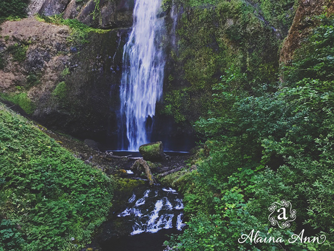 Falling in love with Oregon :: Alaina Ann