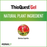 Thioquest® Gel