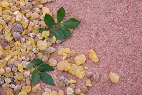 Alchemlife-Flexiqule-Boswellia extract