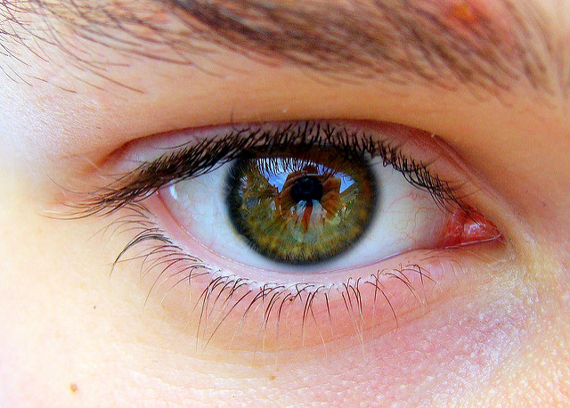 Can chiropractic care cause vision loss?