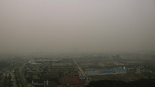 Delhi Air May Not Be Fit For Morning Walks; Herbs And Spices To Tackle Pollution