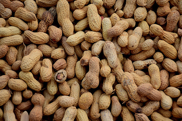 Woman Develops Donor's Peanut Allergy After Lung Transplant