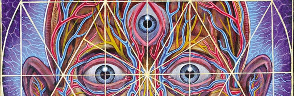 Alex Grey Transfigurations
