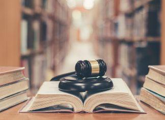 Concursos TJ SP e TJ RJ: veja quais são as disciplinas em comum nas provas e dicas para estudar